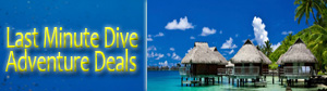 Expedia Deals