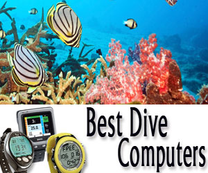 Dive Computer Reviews