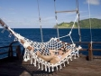 Paradise Dancer Hammock