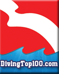 Diving Top 100 Logo
