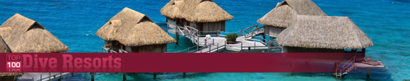 Visit the Dive Resort Listings Site